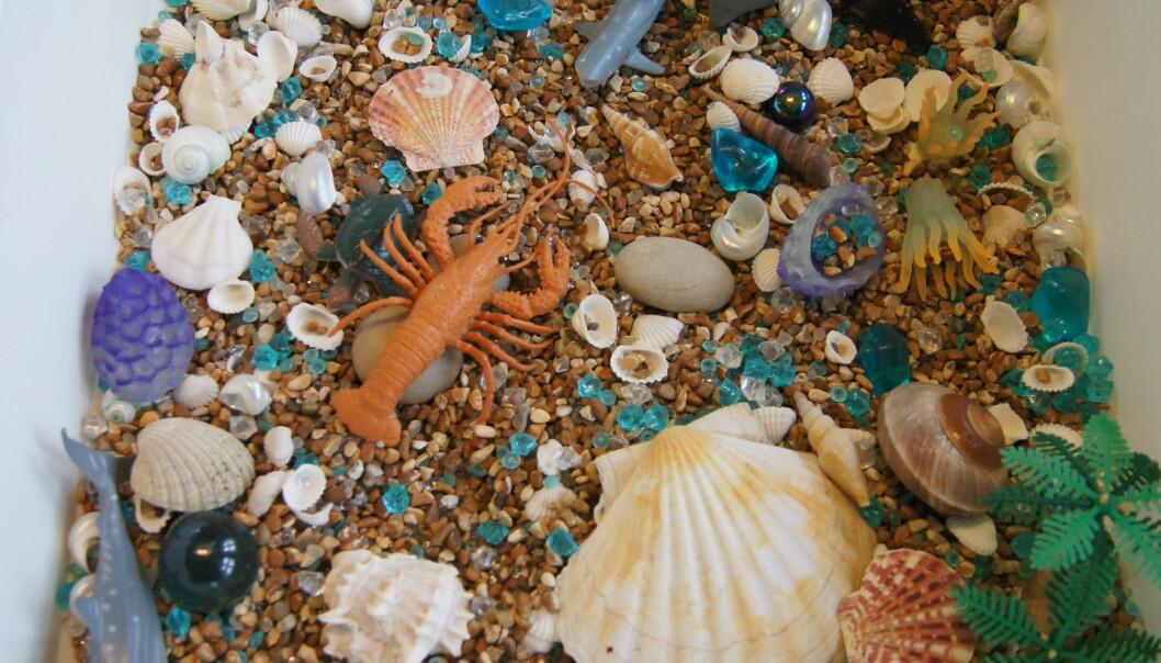 Holder du deg til ett tema er det lettere å komme på hva du kan ha i sansekassene. Livet i havet, årstidene, eventyr og ulike farger er eksempler på tema. Jobber du med prosjektarbeid kan sansekassen passe til temaet. Med hendene i en sansekasse skjer bokstavelig talt lek og håndgripelig læring samtidig.