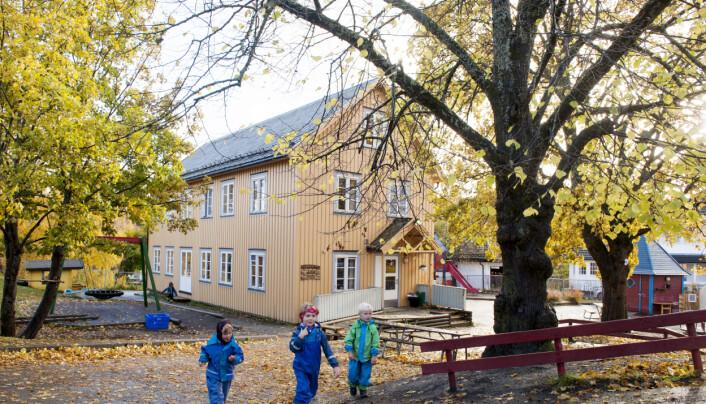Sentrumsnære Sunnland barnehager i Trondheim har et relativt lite uteområde, og ingen stor skog å boltre seg i, men har laget en egen naturlekeplass der Even (5) (f.v.), Eilif (5), og Kasper (4) får hugge ved, sage og klatre i trærne.