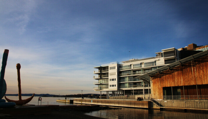 Barnehagene har postadresse i en eksklusiv leilighet ytterst på Tjuvholmen i Oslo.
