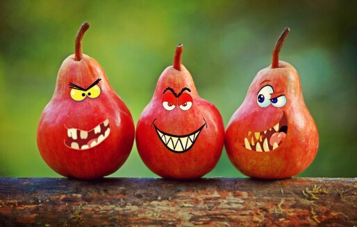 Smilefjesundersøkelsen er et uttrykk for nedvurdering av praksisbasert erfaring
