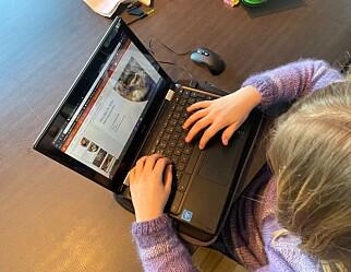 Manglende Chromebook-oppsett kan bety bøter for danske kommuner