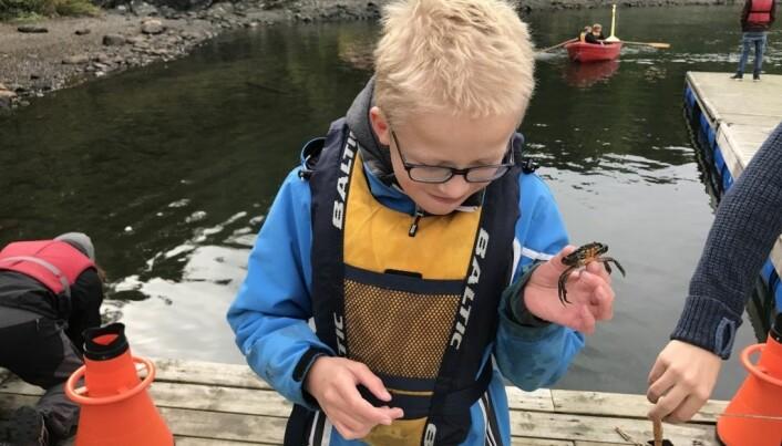 Øyvind holder orden i krabbefangsten