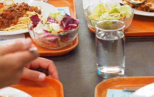 Veldedighetsorganisasjoner leverer mat til elever som ikke får skolemat