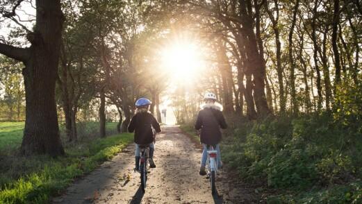 Bevegelse, lek og friluftsliv kan bidra til livsmestring