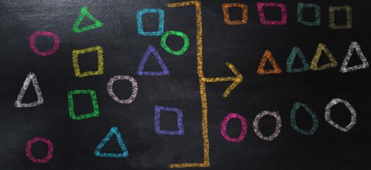 Læringsutbytte i politikk og praksis