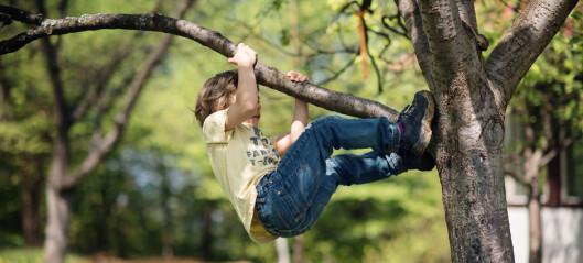 Det fysiske miljøet i barnehagen har stor betydning for barns fysiske aktivitet og trivsel