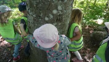 Barna fikk større ordforråd og ble bedre problemløsere da barnehagen jobbet systematisk med matte