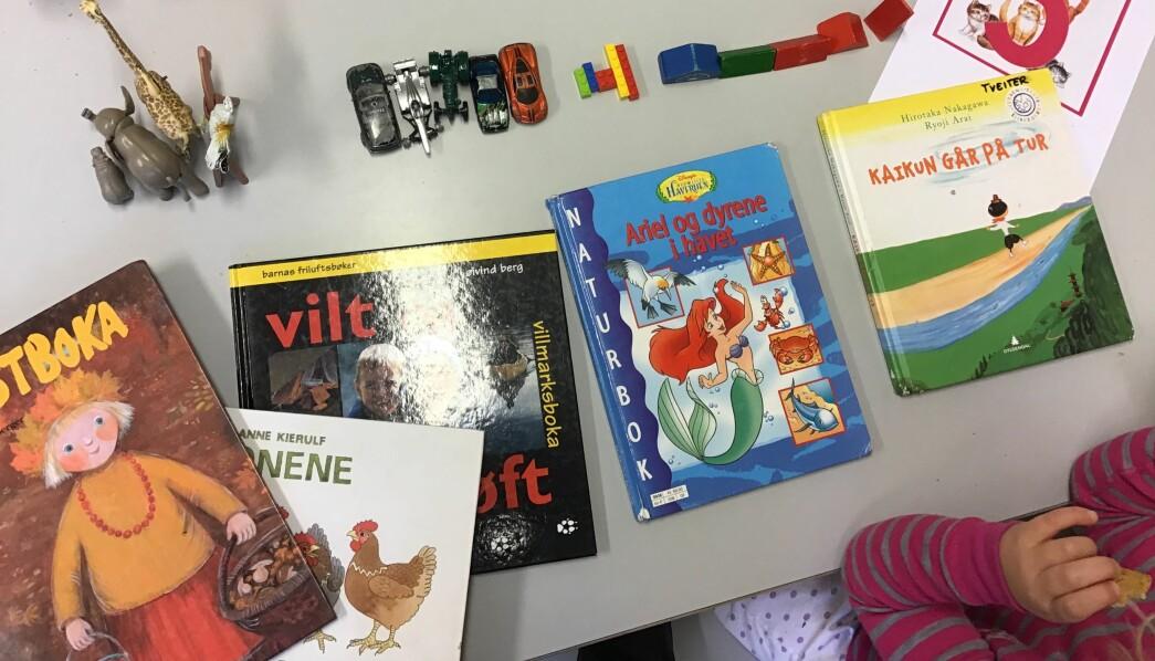 Barna teller bøker, bilder og dyr, der alt blir fem. Prosjektet Lekematikklandet har ført til at barna har blitt merkbart flinkere til å beskrive, forklare og resonnere, og de forstår at det ofte finnes mer enn én løsning på en oppgave.