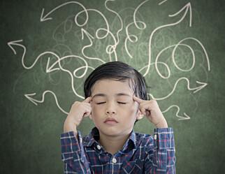 Det er vanskelig for meg å tro at et barn på fire år, som eksponeres for fire språk, ikke blir språkforvirret