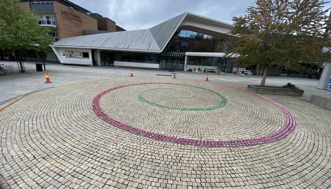 Slik ser kunstvernet ut i sin helhet. En stor spiral av lekende vitaminer.