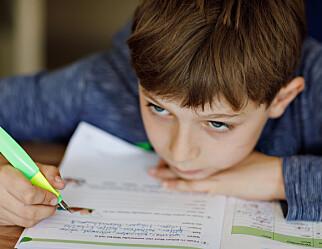 Lærere om hjemmeskolen: Satte begrensninger for valg av metode