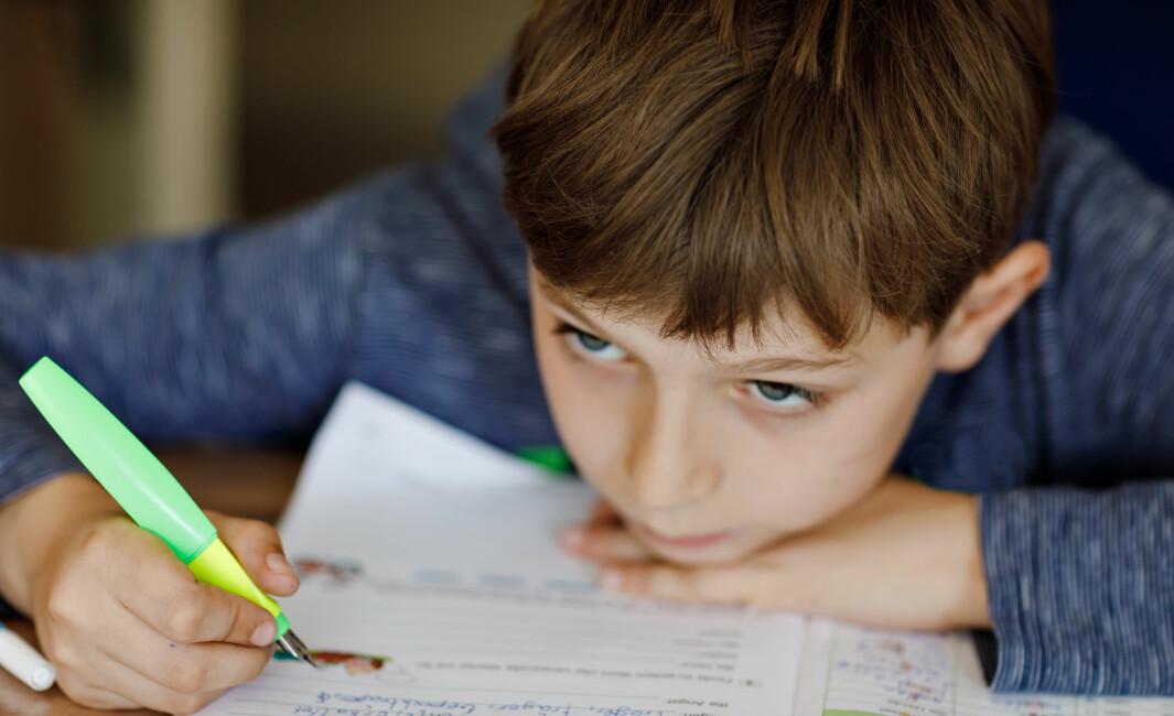 929 lærere har svart på hvordan de opplevde hjemmeskolen i vår.