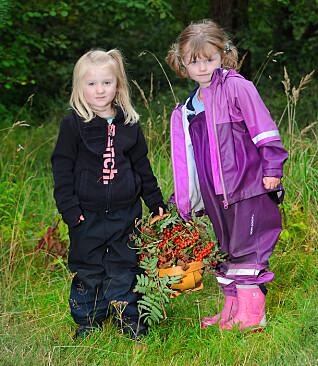 Lykke Erika Greenwood (t.v.) og Anniken Aarskog Mortensen i Lekeslottet barnehage bærer kurven med alle rognebærene barna har plukket til naturkunsten de skal lage.