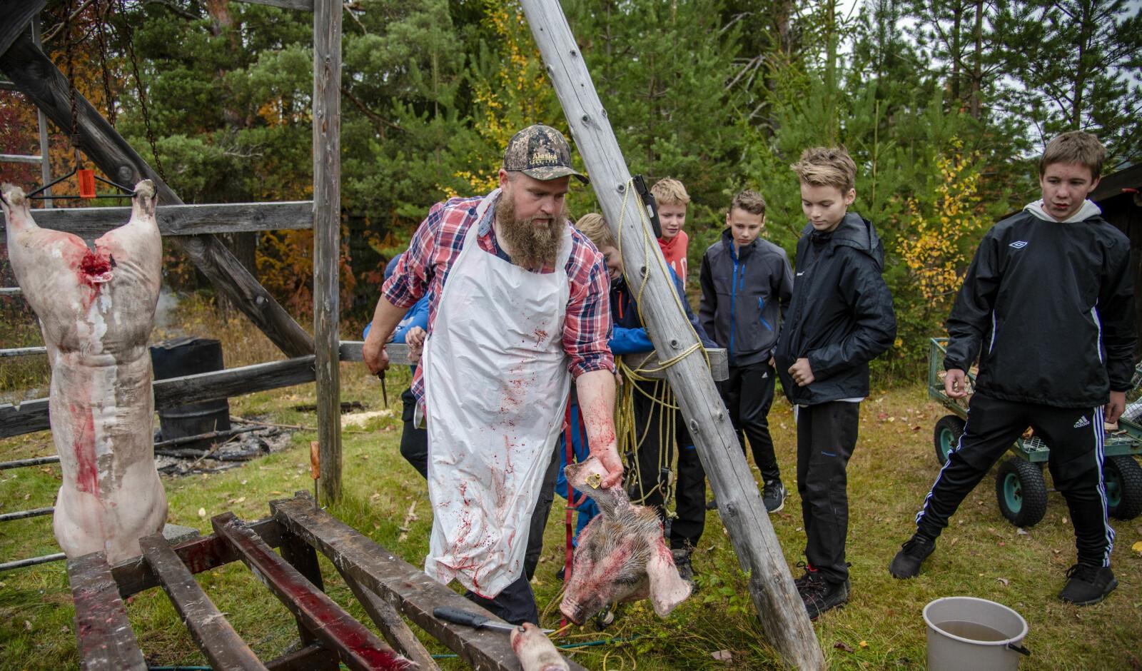 Grisehodene blir ikke til sylte. Lærerkollegene Ole Eriksen (bildet) og Audun Strand er også jaktkamerater og bruker dem som reveåte. Bak ser vi Even Johnsen, Lukas Moe Olsen og Oskar Solberg-Austeng.