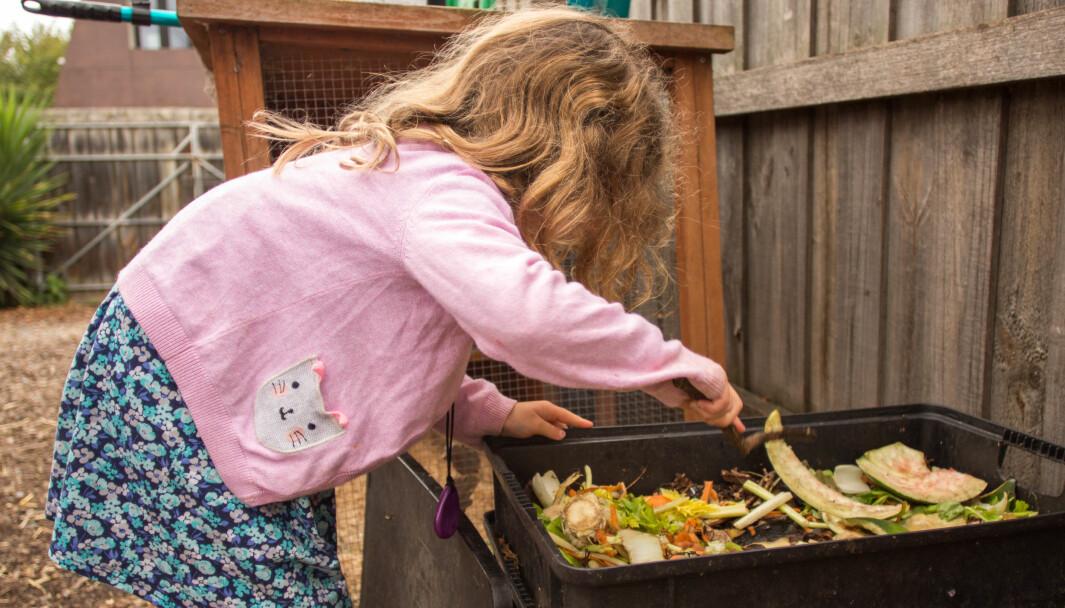 40 prosent av de norske barna sier de komposterer mat i barnehagen, mens 65 prosent av de australske sier det gjør det, viser studie. Her komposterer barna i barnehagen A Step Ahead i Australia i en tidligere reportasje i Første steg.