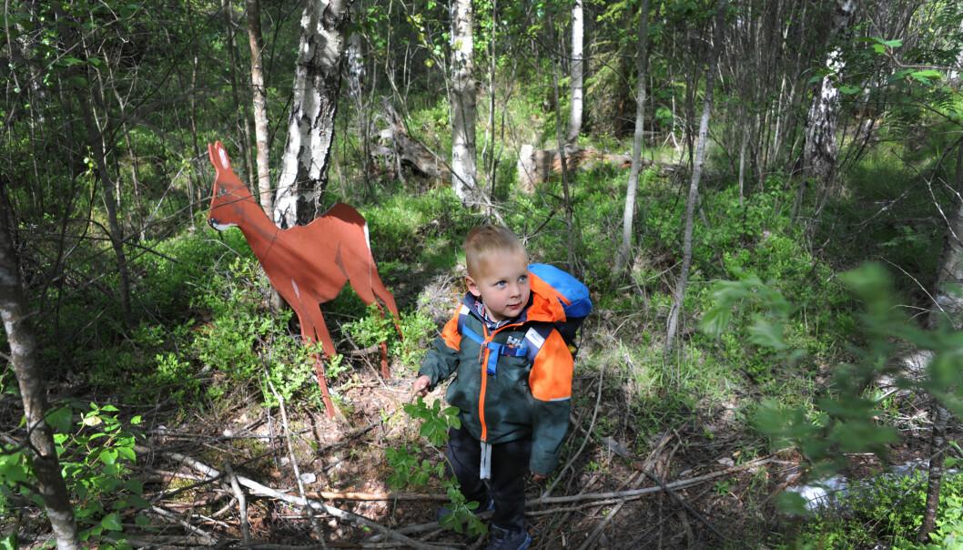De voksne i barnehagen har plassert dyr som er laget av finérplater i skogen. Odin Borgaas (3) og barna stopper gjerne og synger en sang for rådyret.