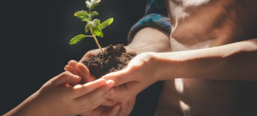 Barnehagelærerne får ikke brukt sin kunnskap om miljøvern