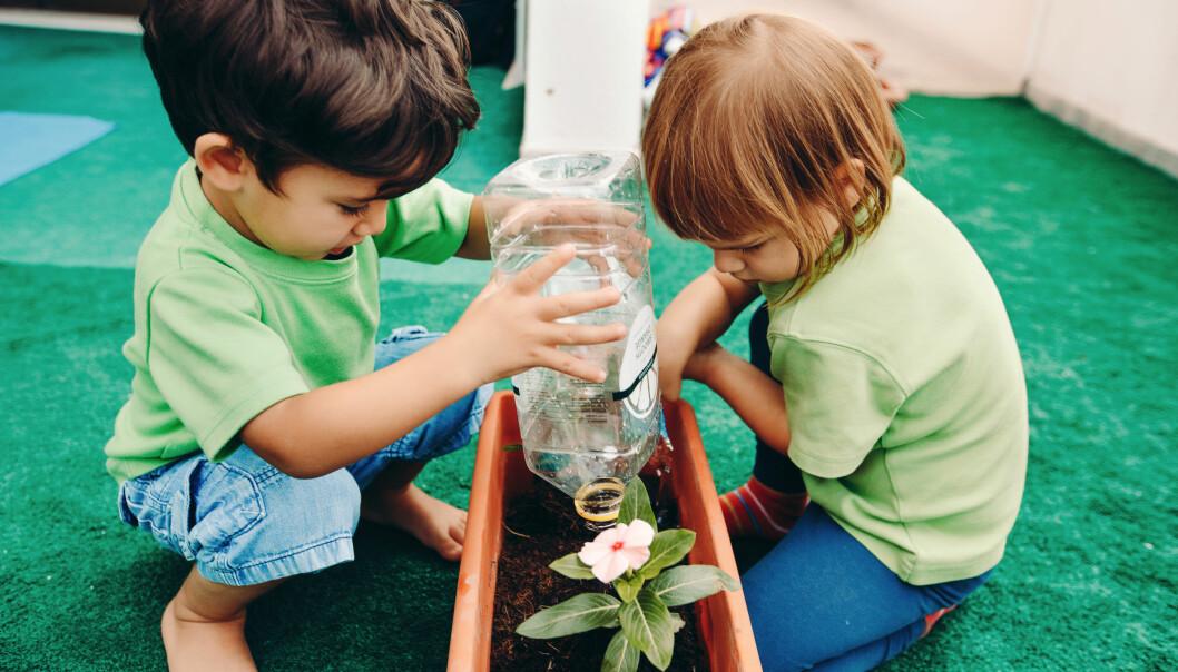 Barna har en grønnsakhage på hver avdeling, der barna sår frø, vanner planter og legger i ny jord fra kompostbingen.