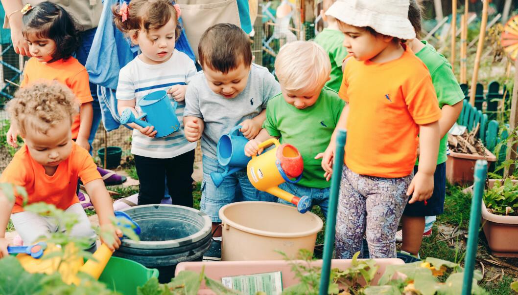 Barna i miljøbarnehagen vanner planter i grønnsakhagen eller får tid til å sitte i ro ute og observere. Det gir barna følelsen av balanse og ro og bedre konsentrasjon, ifølge ansatte.