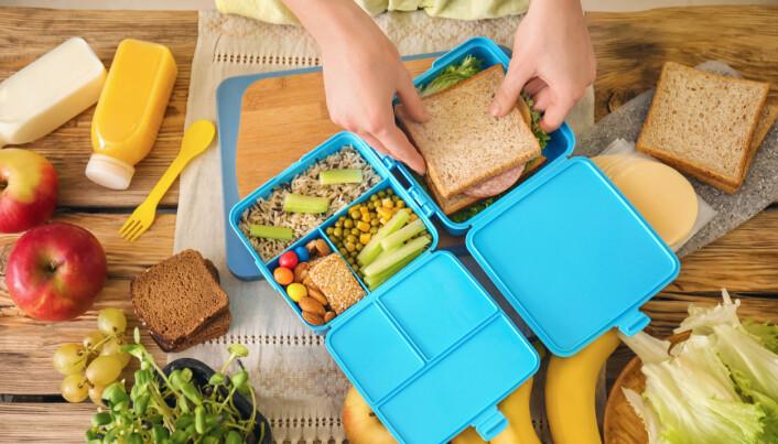 Barnehagelærerne erfarer også at foreldre kan avsløre seg ved at barna får spise mat med for eksempel laktose eller gluten i barneselskap, mens de ikke skal ha dette i barnehagen, mener høyskolelektor Kari Ryslett,