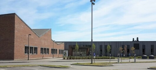 Tre mutanttilfeller påvist i Hurdal – skole og barnehage stenges