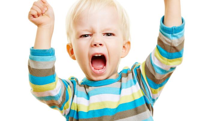 Sjølv om ingen ynskjer eit konfliktnivå som hindrar konsentrasjon og djup leik, kan mål om å unngå konfliktar, hindre barn i å lære korleis ein kan løyse konfliktar, meiner professor Liv Torunn Grindheim.