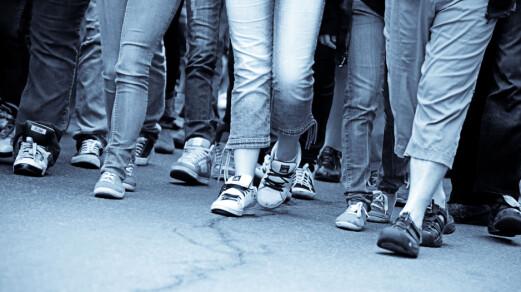 Ungdomsskoleelevers demokratiske deltagelse