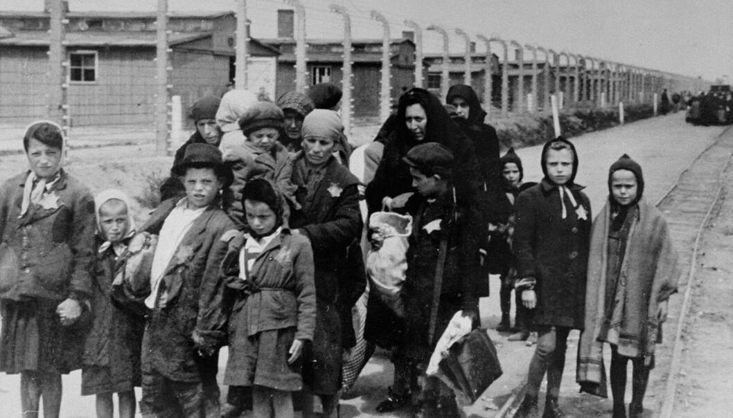 Mange lærere mangler kunnskapen som kreves for å undervise korrekt om Holocaust, viser forskning. Bildet viser jøder på vei til gasskamrene i Auschwitz-Birkenau mai 1944.