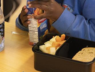 Oslo vil teste lik makspris for kostpenger i kommunale og private barnehager